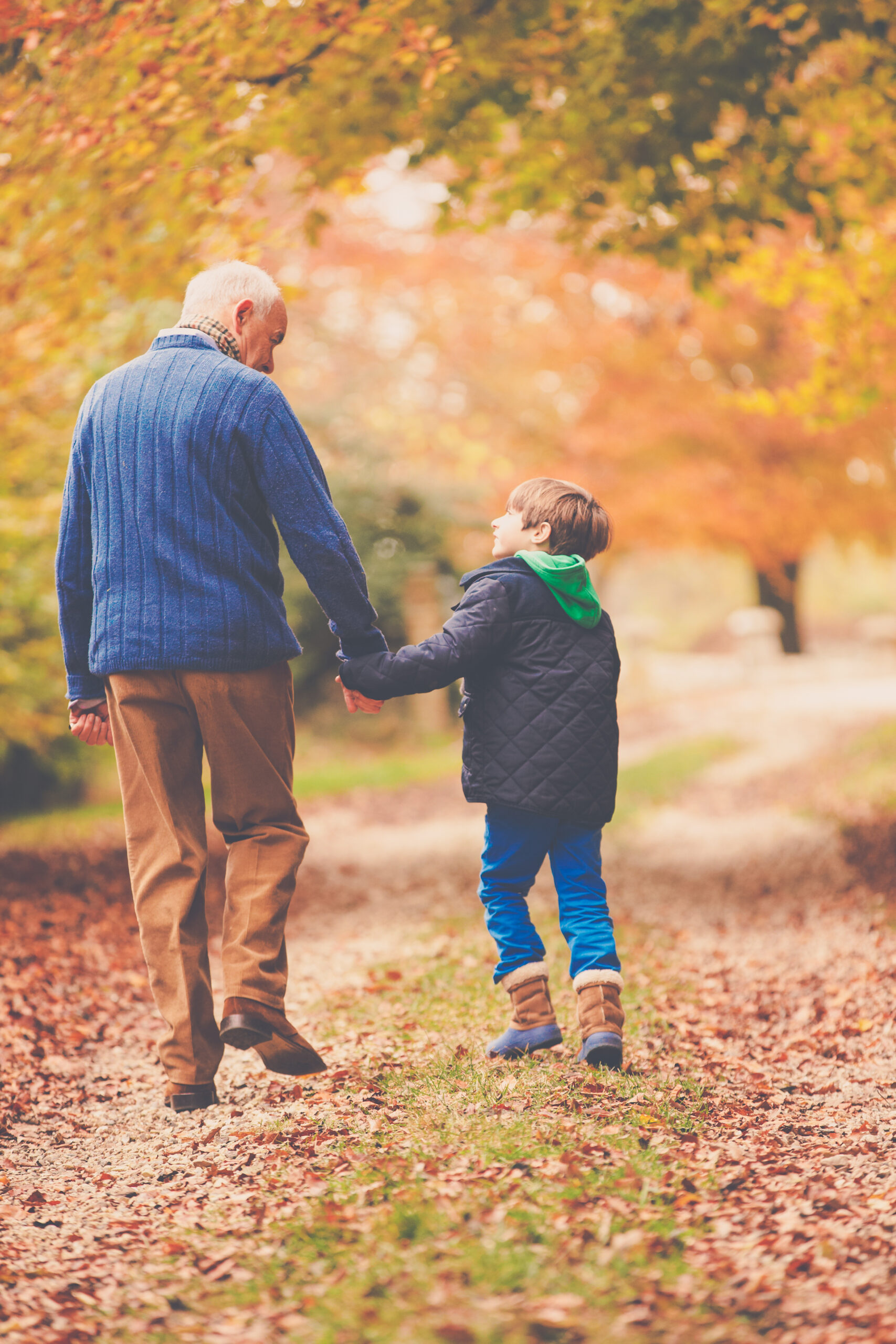 Rear View Of Grandfather And Grandson Walking Along Path Holding Hands Looking At Each Other Family Love Outdoor Caption