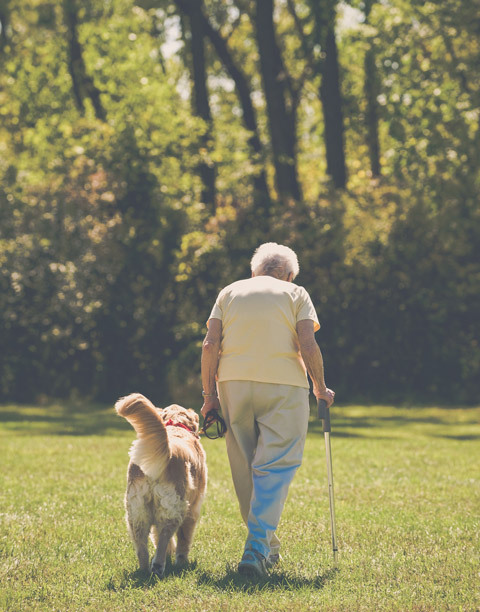Older woman with cane walking with dog in park